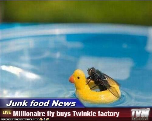 Junk food News - Millionaire fly buys Twinkie factory