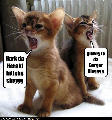 Hark da Herald kittehs singgg