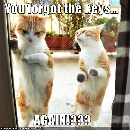 You forgot the keys...  AGAIN!???