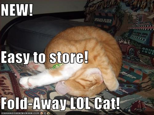 NEW! Easy to store! Fold-Away LOL Cat!