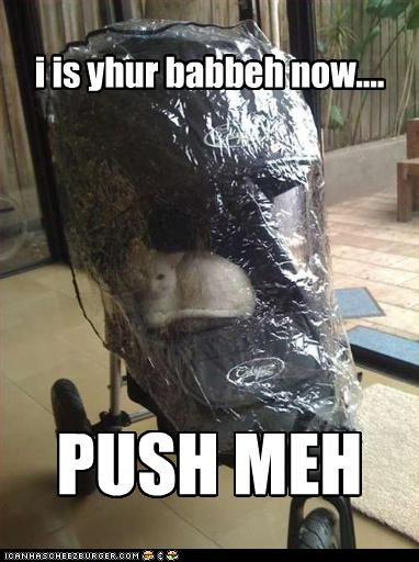 i is yhur babbeh now....