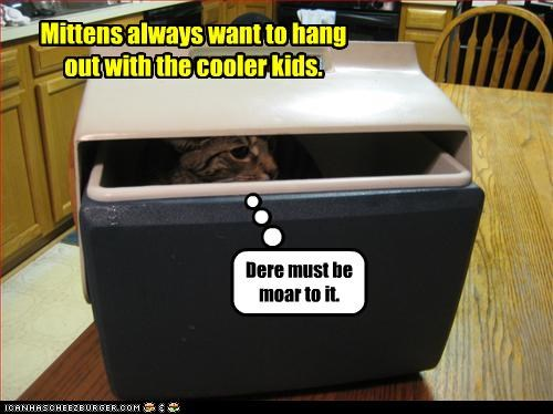 Mittens always want to hang out with the cooler kids.