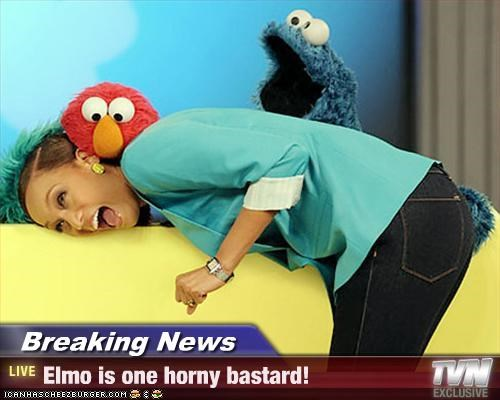 Breaking News - Elmo is one horny bastard!