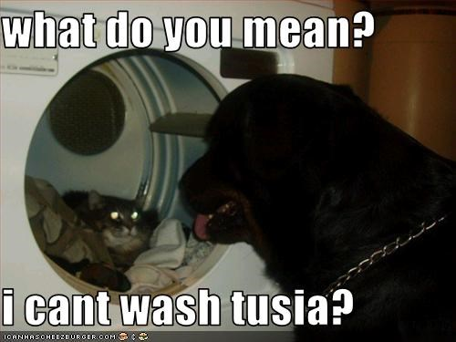 what do you mean?  i cant wash tusia?