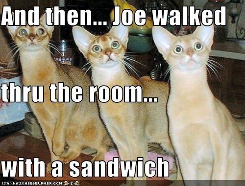 fud,nom nom nom,sandwich,want