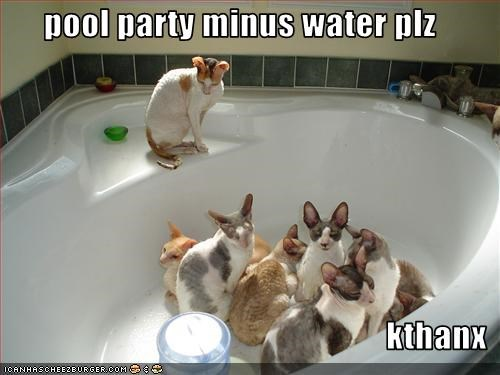 pool party minus water plz  kthanx