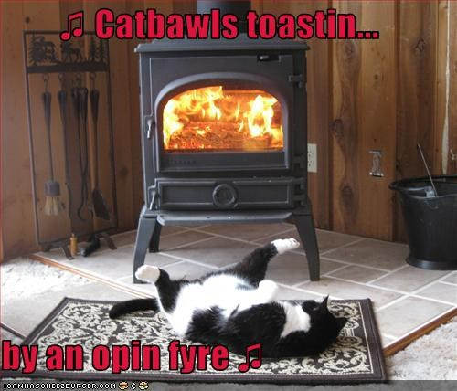 ♫ Catbawls toastin...  by an opin fyre ♫