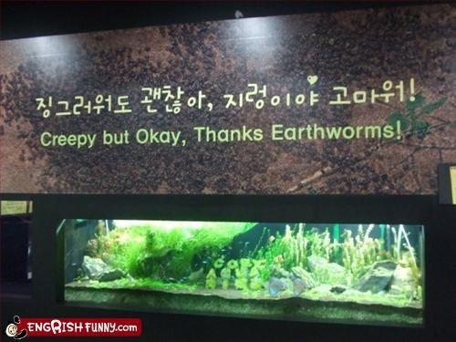 creepy,earth,g rated,Okay,signs,thanks,worm