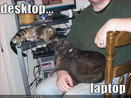 desktop...  laptop