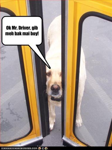 Ok Mr. Driver, gib meh bak mai boy!