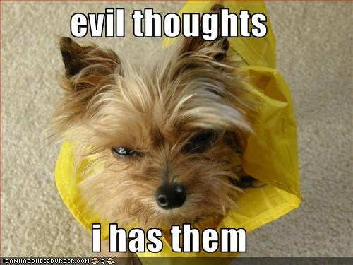 evil thoughts  i has them