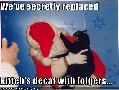 We've secretly replaced  kitteh's decaf with folgers...