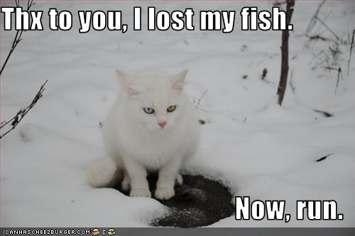 Thx to you, I lost my fish.  Now, run.