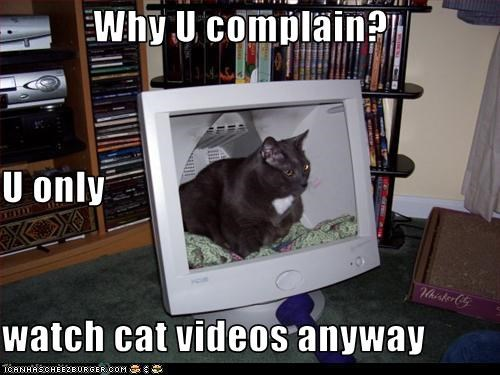 Why U complain? U only watch cat videos anyway