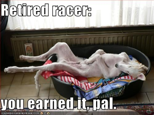 Retired racer:  you earned it, pal.