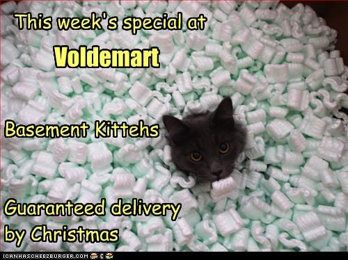 Basement Kittehs   Guaranteed delivery  by Christmas