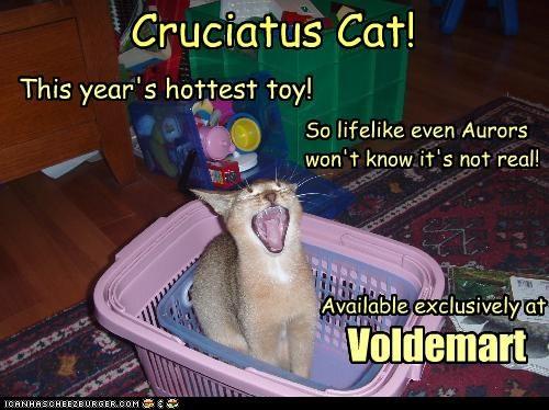 Cruciatus Cat!