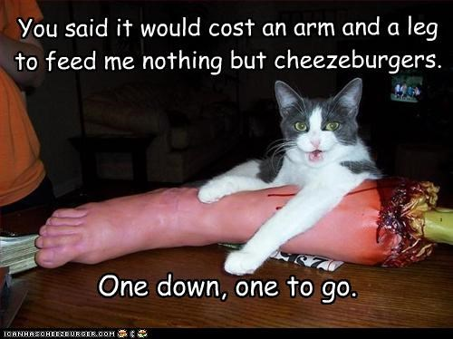 You said it would cost an arm and a leg  to feed me nothing but cheezeburgers.