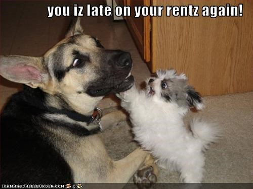 you iz late on your rentz again!