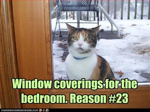 Window coverings for the bedroom. Reason #23