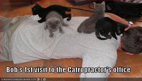 Bob's 1st visit to the Catropractor's office