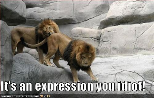 It's an expression you idiot!