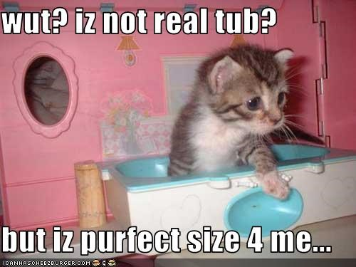 wut? iz not real tub?  but iz purfect size 4 me...