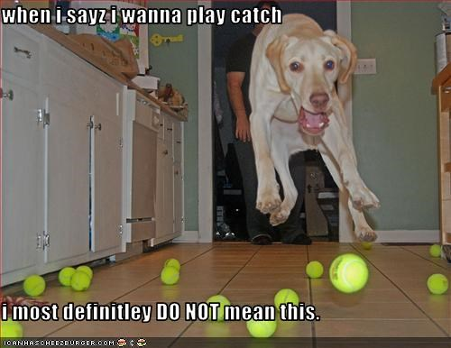 when i sayz i wanna play catch  i most definitley DO NOT mean this.