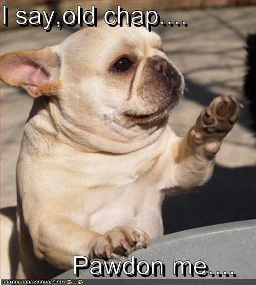 french bulldogs,manners,old chap,pardon me,proper,sir