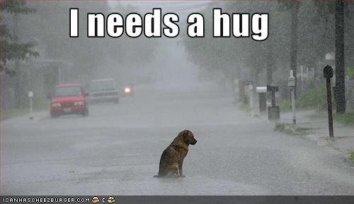 german shepherd,Hall of Fame,hug,lonely,need,raining,Sad,unhappy