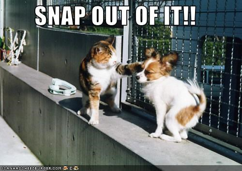 SNAP OUT OF IT!!