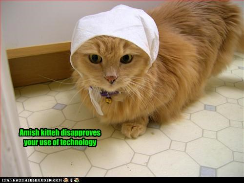 Amish kitteh disapproves your use of technology