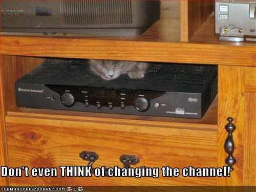 Don't even THINK of changing the channel!