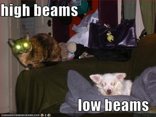 high beams  low beams