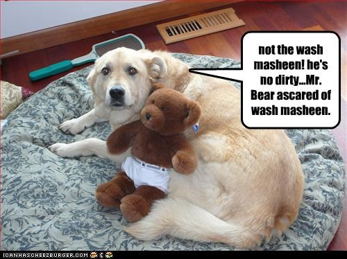 golden retriever,scared,stuffed toy,teddy bear,washing machine