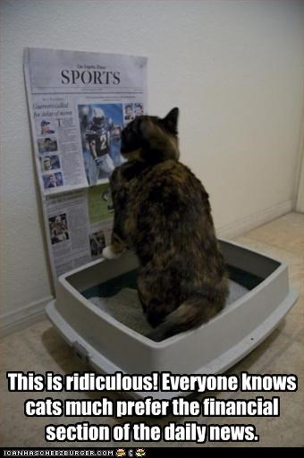 This is ridiculous! Everyone knows cats much prefer the financial section of the daily news.