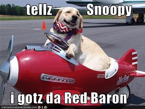 tellz            Snoopy  i gotz da Red Baron