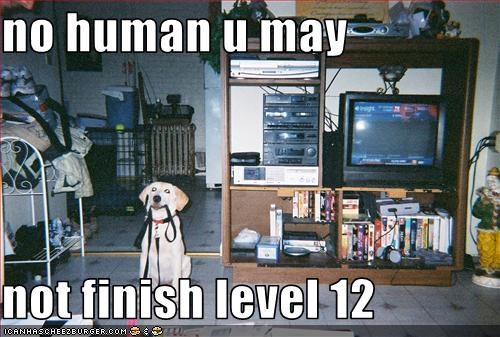 no human u may  not finish level 12