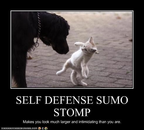 SELF DEFENSE SUMO STOMP