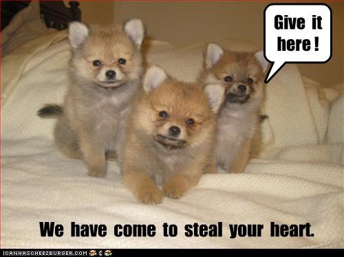 We have come to steal your heart!  Give it here!