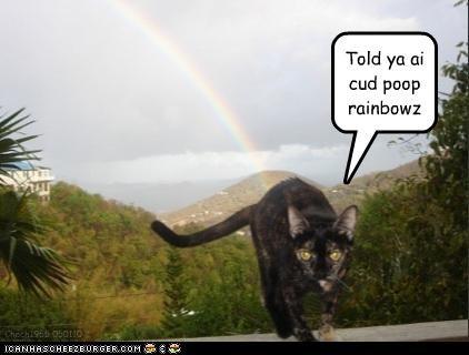 Told ya ai cud poop rainbowz