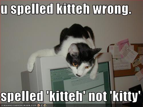 u spelled kitteh wrong.  spelled 'kitteh' not 'kitty'