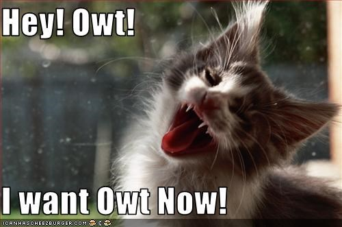 Hey! Owt!  I want Owt Now!