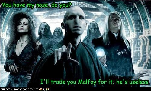 bellatrix lestrange,Harry Potter,helena bonham-carter,Jason Isaacs,Lord Voldemort,Lucius Malfoy,ralph fiennes,sci fi