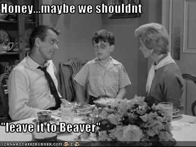 "Honey...maybe we shouldnt  ""leave it to Beaver"""