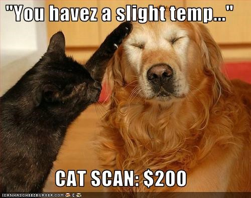 """You havez a slight temp...""  CAT SCAN: $200"