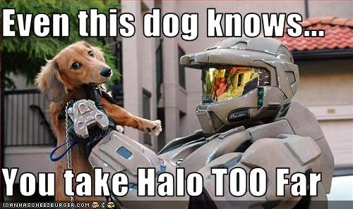 Even this dog knows...  You take Halo TOO Far