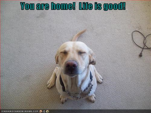 You are home!  Life is good!