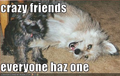 crazy friends  everyone haz one