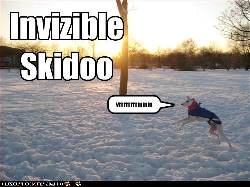 Invizible Skidoo